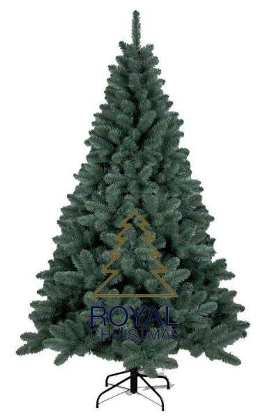 Royal Christmas Dakota Blue Weihnachtsbaum