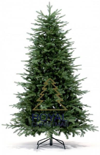 Royal Christmas Auckland Premium Weihnachtsbaum